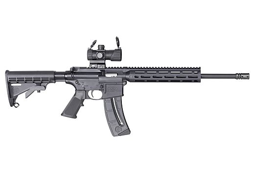 """S&W M&P15-22 SPORT OR .22LR 16.5"""" MP100 RED/GRN DOT 25-RD"""