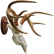 HS EURO FULL SKULL ANTLER MOUNTING KIT