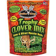 ANTLER KING TROPHY CLOVER 1/2 ACRE 3.5LB SPRING/FALL