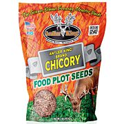 ANTLER KING CHICORY 1# BAG PERENNIAL 1/4 ACRE