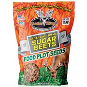 ANTLER KING SUGAR BEETS 1# BAG ANNUAL 1/8 ACRE