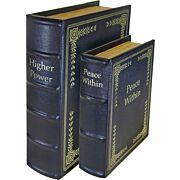 PSP CONCEALMENT DIVERSION BOOK SET OF 2 1-SMALL 1-LARGE
