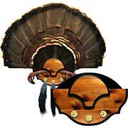 MOUNTAIN MIKE'S BEARD MASTER TURKEY PLAQUE KIT